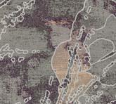 T1485-9C1