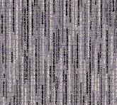 T1681-9C1