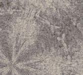 T1818-9C1